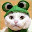 Просмотр профиля: Evgeni4